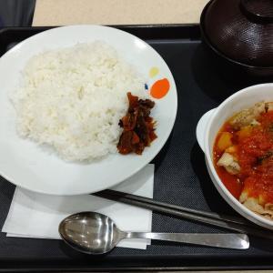 【松屋】ごろごろチキンのトマトカレー