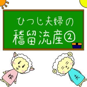 【漫画】稽留流産:2話目