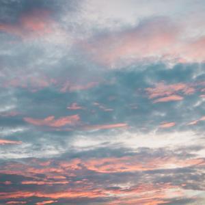 空を眺めながらのお散歩、最高です。