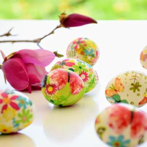 卵子の質とミトコンドリアの関係