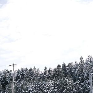 SNOW (皆さまお気をつけて…)