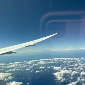 2021年夏、日本帰国〜出国・入国の準備〜成田空港での手続きは3時間
