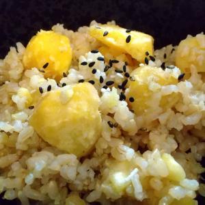もちもち美味しい発芽玄米栗ご飯