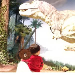 恐竜が見られる茨城県自然博物館 IBARAKI NATURE MUSEUM