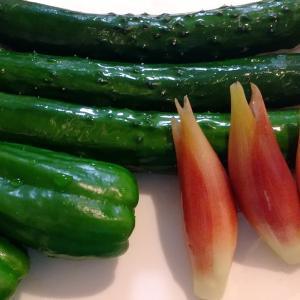 夏野菜でデドックス 山形の郷土料理だし 谷やんさんのレシピ