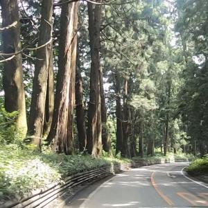 栃木の観光とグルメは華厳の滝と宇都宮餃子が鉄板!【でも湯葉やそば、戦場ヶ原とかも良かったよ】