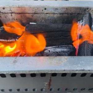 焼き鳥とビール 花火