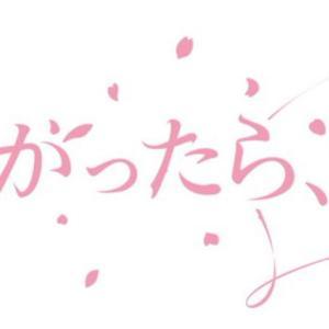 櫻坂46 冠番組 そこ曲がったら、櫻坂?