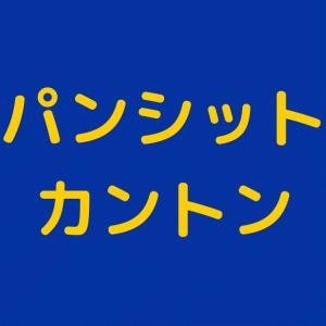 フィリピンの焼きそば・パンシットカントン インスタントなら20円!
