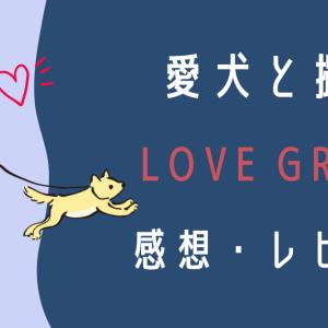 【ペット写真】ラブグラフを利用して愛犬と記念撮影!(感想・レビュー・体験談)