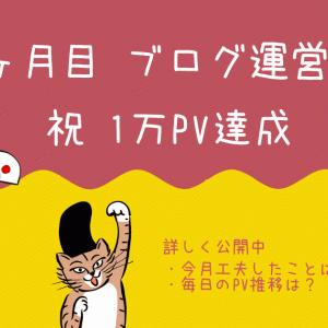 ブログ運営記 part.12|ブログ開始8ヶ月目の振り返り編(1万PV達成)