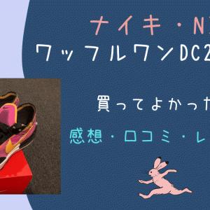 【シースルー】NIKEのワッフルワンDC2533-600(派手な色使いのナイキスニーカー・体験談・口コミ・レビュー)