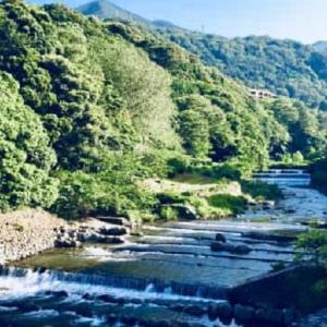 GOTOトラベルで箱根へ旅行してみた話。めっちゃ良いやん。