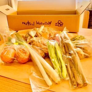 ナチュラルハーモニーの自然栽培野菜が届きました!