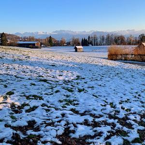 アルプスを眺めながらの冬散策