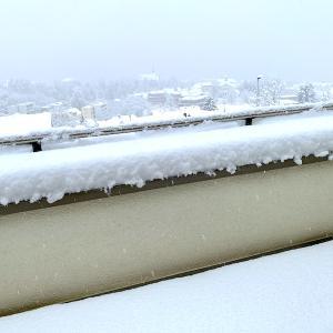 大雪の中、買い出しへ