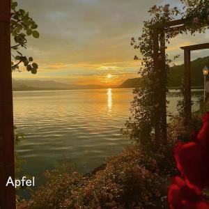 トゥーン湖畔にて 美しい夏の夕暮れ