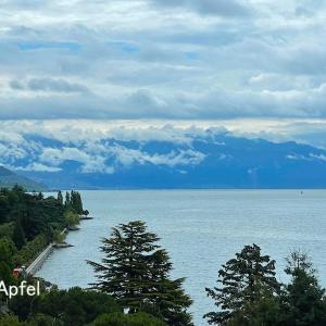 スイス各地で大雨、洪水や地滑りの恐れあり