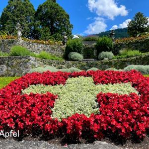 家に国旗を掲げて下さいのご案内(スイス建国記念日)