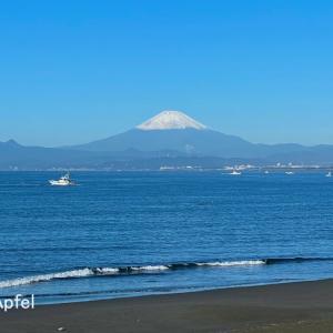 富士山、見えた〜!