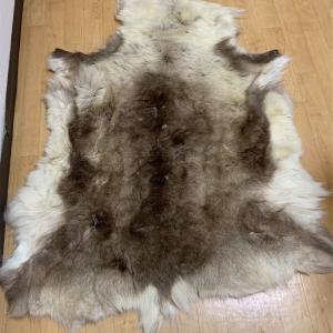 トナカイの毛皮の敷物  −15度でも大丈夫!(らしい😁)話し〜