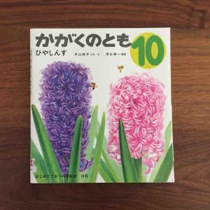 お花と一緒に楽しみたい一冊。「ひやしんす」