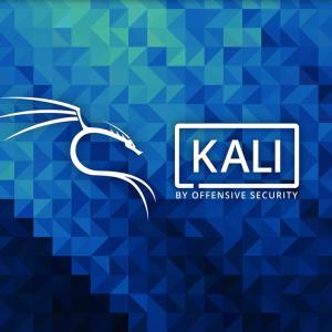 Kali Linux インストール後の設定