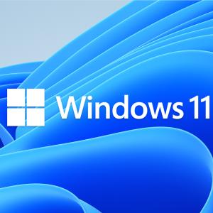 Windows11 アップグレードチェックアプリを使ってみました