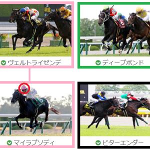 第68回 神戸新聞杯(GⅡ) 結論