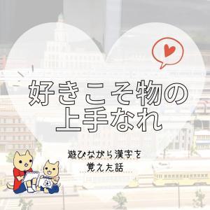 好きこそ物の上手なれ【6歳息子の漢字勉強法】