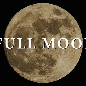 【2020.11.30 双子座の満月】自分自身の力で生きていく力を身につける