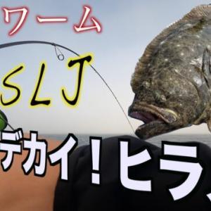ヒラメの釣り方!【ジグヘッド+ワーム】オフショア船編!SLJもOK!
