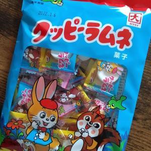 グッピーラムネ カクダイ製菓 懐かしーい💖