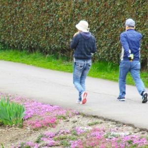 朝食と食後血糖値と散歩(1)