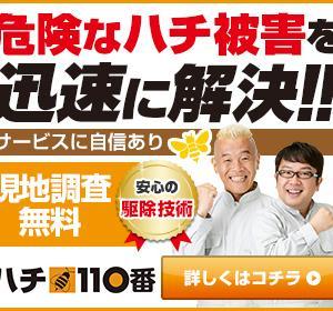 顧客・到着スピード・価格満足度3冠達成【ハチ110番】
