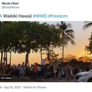 ハワイ衝撃動画を一挙公開