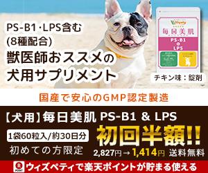 愛犬の皮膚は大丈夫?獣医師推奨サプリ「毎日美肌 PS-B1&LPS」
