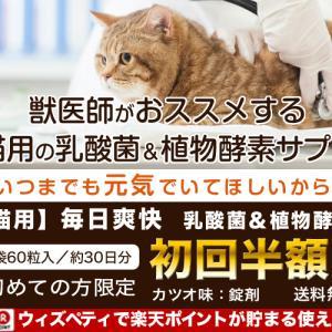 獣医師推奨の猫用(カツオ味)の乳酸菌&植物酵素配合サプリ「毎日爽快」