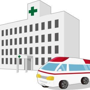 保険は大事だよ🌟うっかり失効に気をつけよう🚨意外と事故は失効中におきますっ😭💦