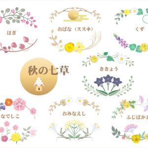 秋の七草🌸🌿 季節の花を楽しんで参りましょ💕