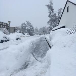 ドイツの2年前の大雪について思い出す!