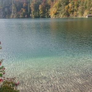 ドイツでは湖や川でも泳ぎます。