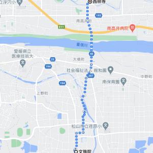 川より低い水郷の寺 愛媛県松山市「西林寺」(その57)