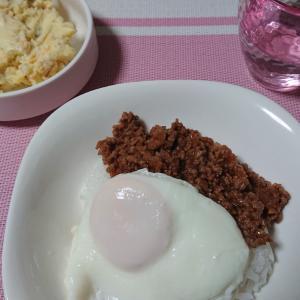 【人妻生活】昨日の晩御飯と今日のお弁当と昨日のブログの話