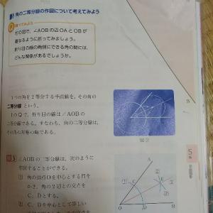 中一数学教科書の図形問題【数学にも国語力が必要と感じた話】②