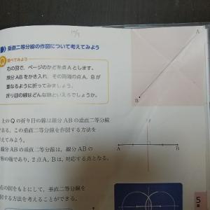 中一数学教科書の図形問題【数学にも国語力が必要と感じた話】