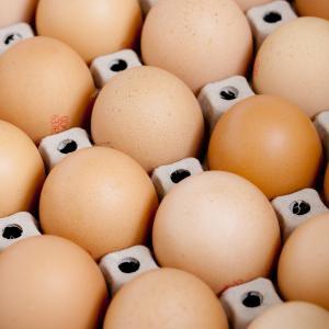 【卵】たんぱく質だけじゃない!栄養満点のスーパーフードだった