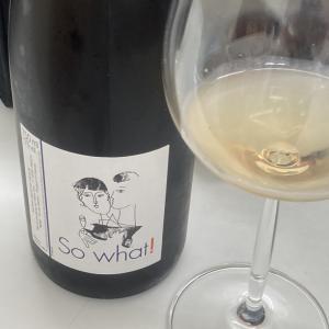 ヴァン・ナチュール&日本ワインの試飲会に行ってきた❗️