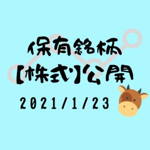 【2021年1月】日本株・外国株の保有銘柄および損益公開!