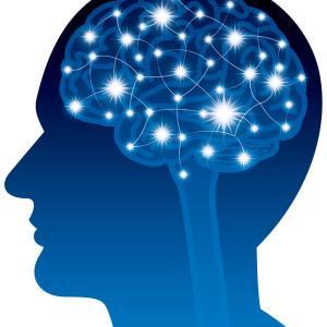 脳は物質なのに…、なぜ脳が意識・思考し、人格まで作れるの?